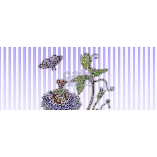 Merian: Passiflora