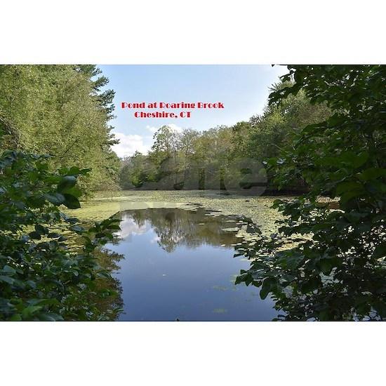 Pond at Roaring Brook 1