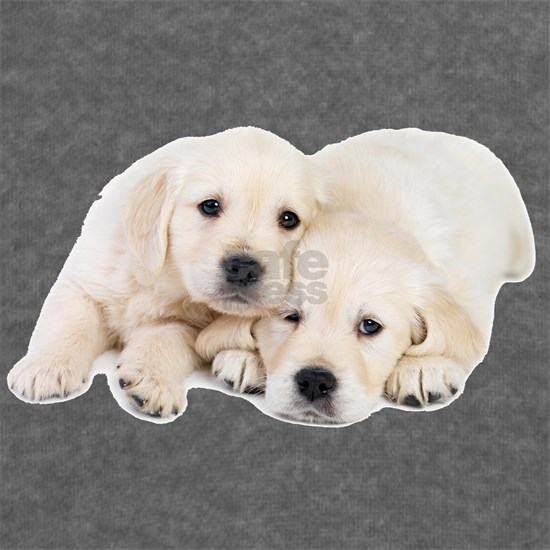 White Labrador Retriever Puppies