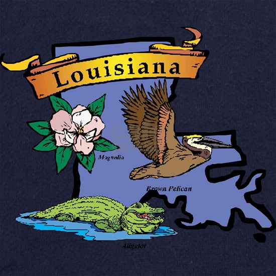20048260-Louisiana-map