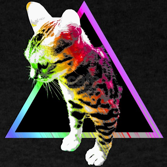 Rainbow Triangle Cat