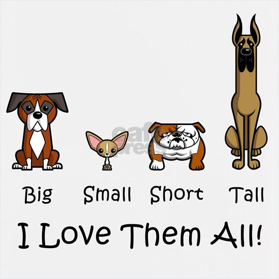 SS_Big-Small-Short-Tal...
