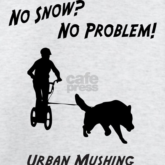 Big Dogs Urban Mushing