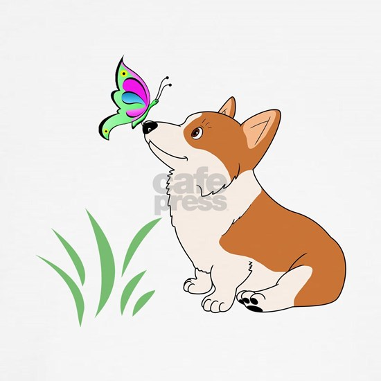 Corgi with butterfly