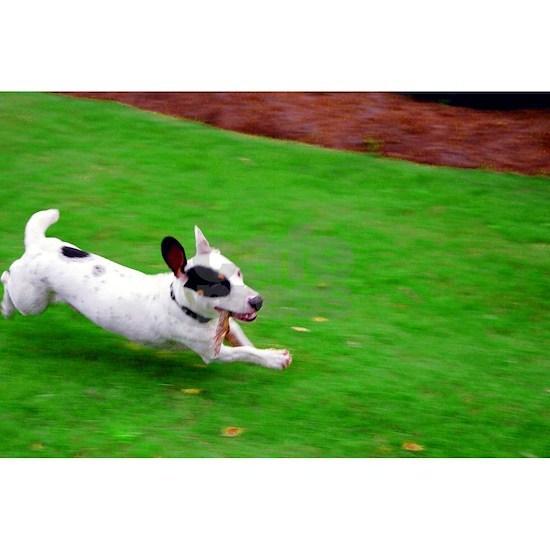 ace running