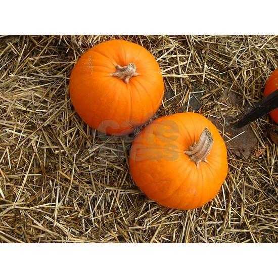 two sugar pie pumpkins on hay country scene