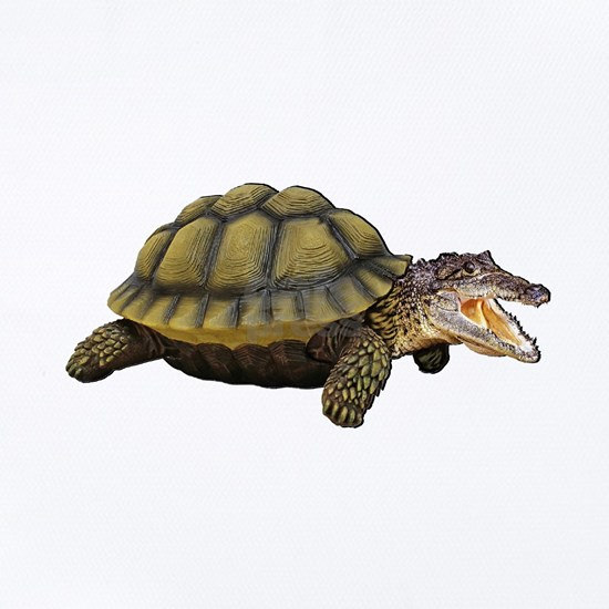 REAL SNAPPER