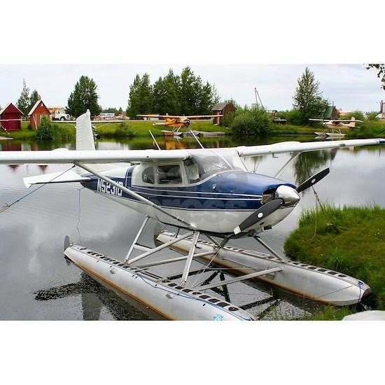 White & navy float plane, Alaska