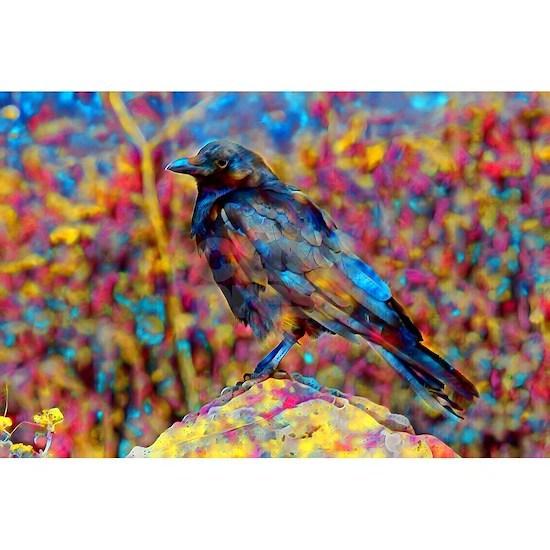 rainbow birb