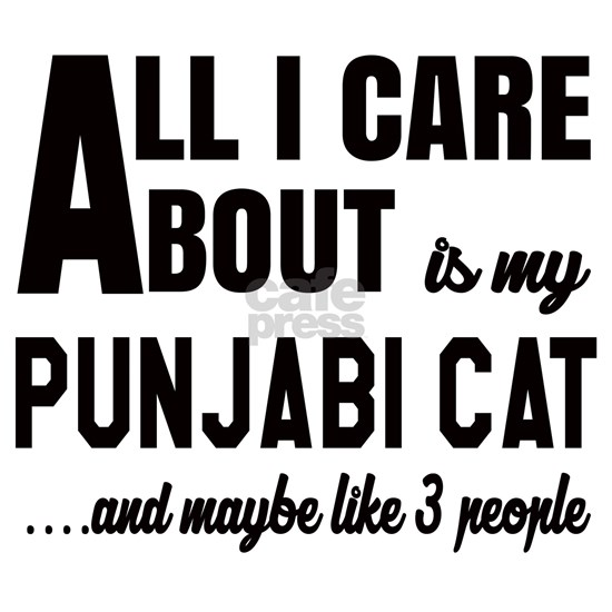 All I care about is my Punjabi