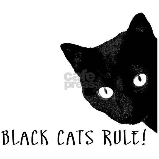 Black cats rule