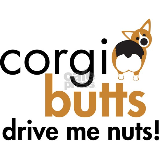 corgi_nuts_rht