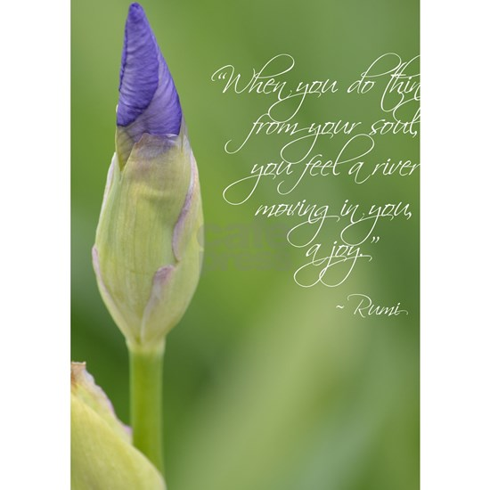 Iris with Rumi Quote