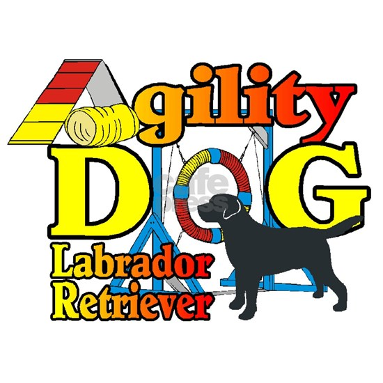 Black Lab Agility