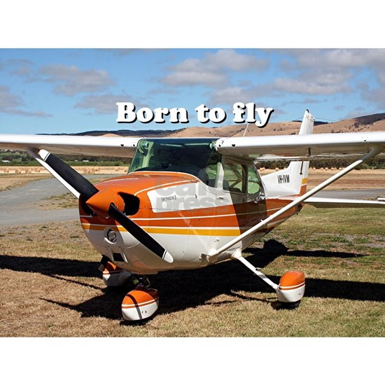 Born to fly: high wing aircraft