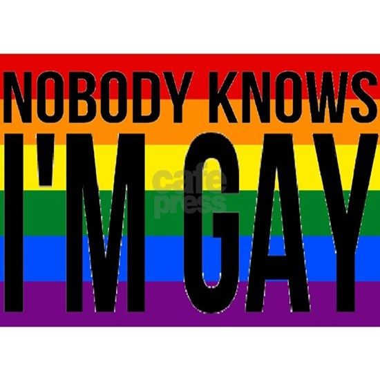 Nobody Knows I'm Gay