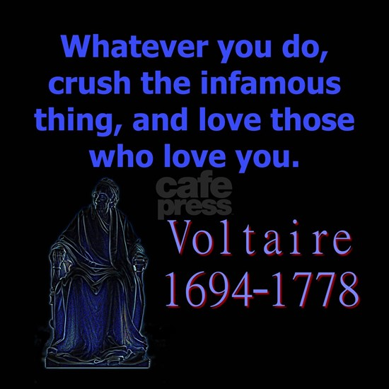 Whatever You Do - Voltaire