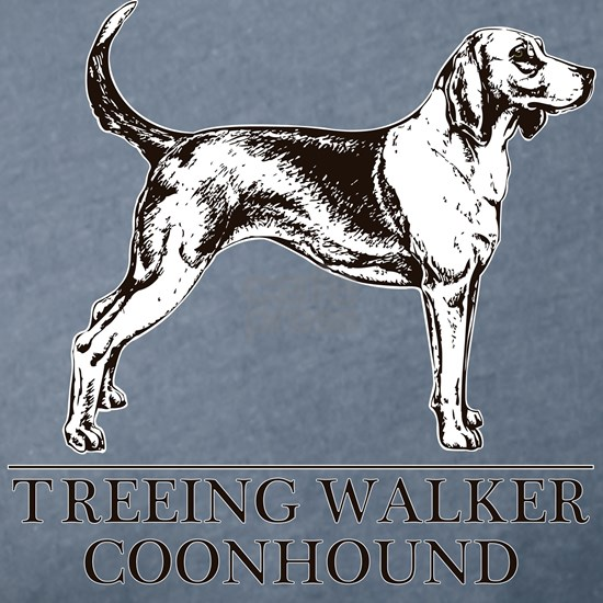 Treeing Walker Coonhound white