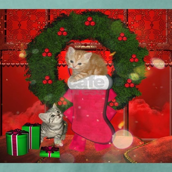 Christmas, funny kitten with gifts