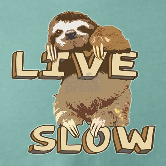 Funny Sloth - LIVE SLOW