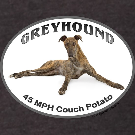 GVV 40MPH Couch Potato