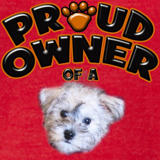Proud Owner of a Schnoodle.png
