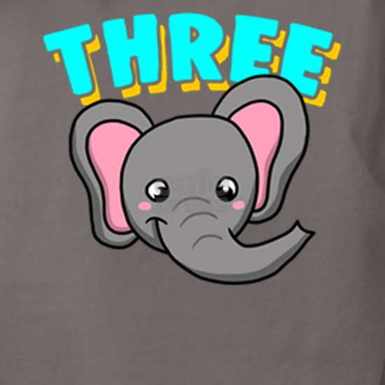 3rd Birthday Elephant Safari Party 3 Apparel