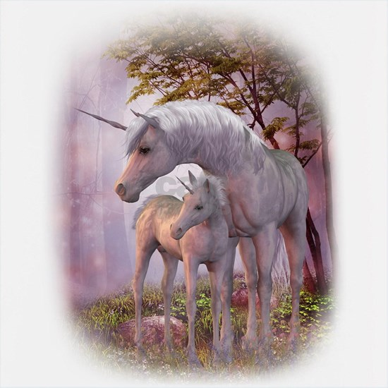 Enchanted Unicorns
