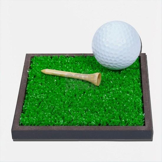 GolfBallTeeLayingOnGrass102111