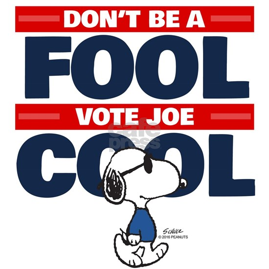 Vote Joe Cool