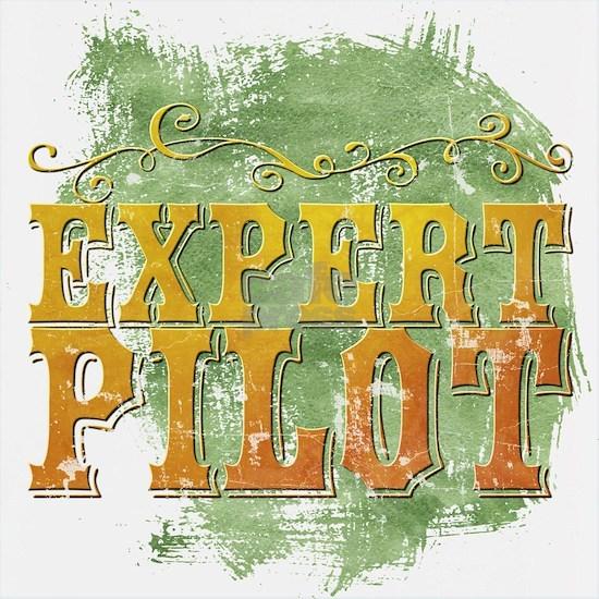 Expert Pilot