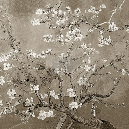 Almond Branches Sepia