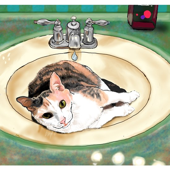Catrina in the Sink