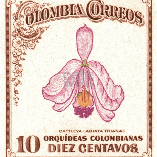 1947 Colombia Cattleya Trianae Orchid Stamp