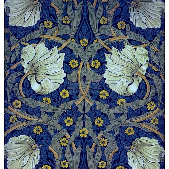 White Blue Tulips