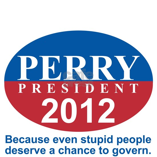 PERRY_STUPIDGOVERN copy