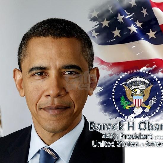 Obama Calendar 001 cover