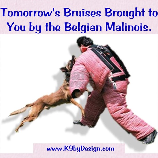 Bruises by Malinois