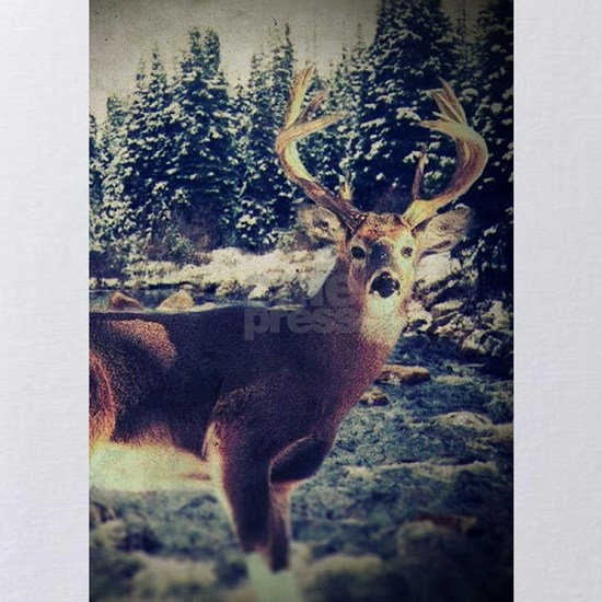 forest camo white tail deer
