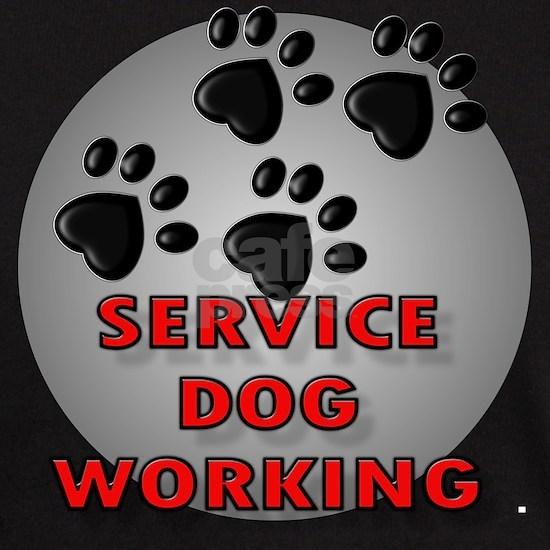 SERVICE DOG WORKING