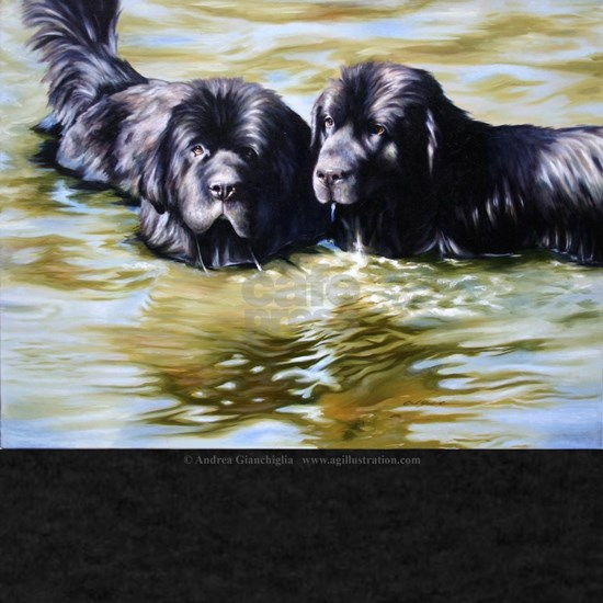 Newfoundlands Wading in River