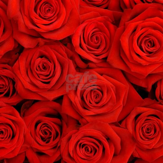 modern love red rose