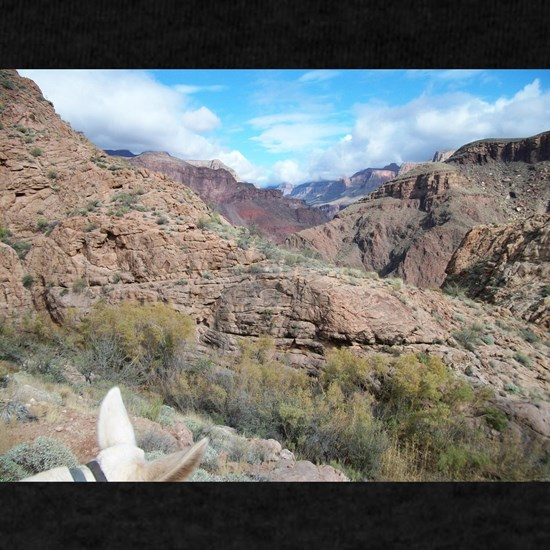 Bright Angel Mule Ride To Phantom Ranch