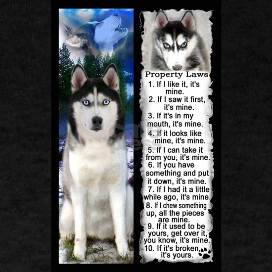 Siberian Husky Dog Laws Rules