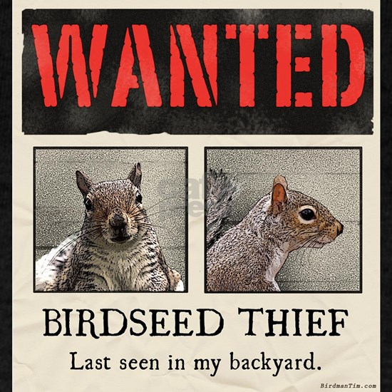 squirrel wanted poster