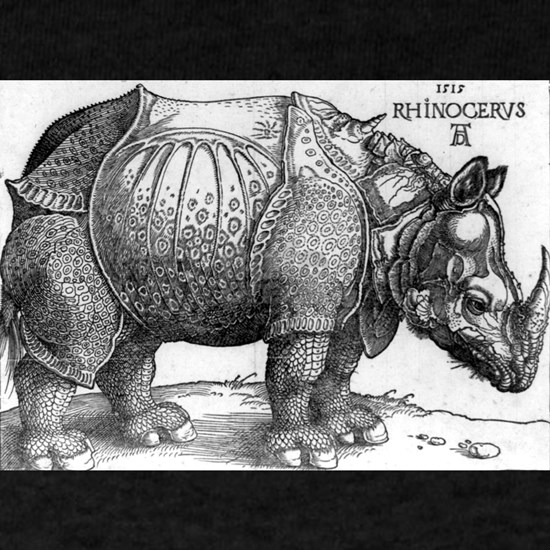 The Rhinoceros - Albrecht Durer - 1515