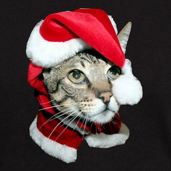 Santa Cat Savannah