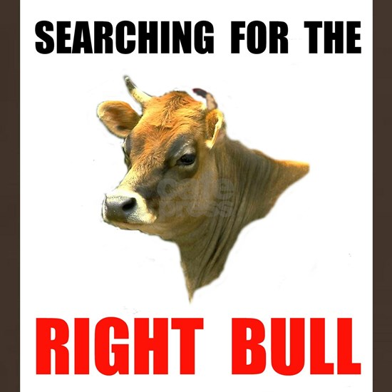 COW SEARCHING