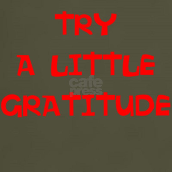 TRY A LITTLE GRATITUDE...