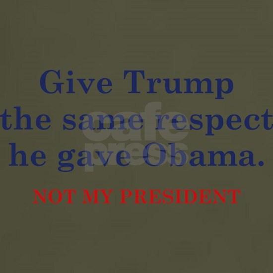 TrumpSameRespect1C
